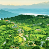 Are-you-planning-to-take-Bandipur-Tour-once