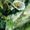 Enjoy-Honey-Hunting-in-Nepal