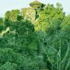 Gorkha-Durbar-Visit