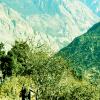 Lets-enjoy-Gosaikunda-Trekking-in-Nepal