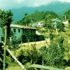 Lets-make-Helambu-Trekking-remarkable