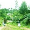 Lets-plan-for-Nagarkot-Chisapani-Trekking