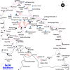 Map – Annapurna Circuit Trekking