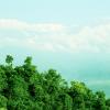 Plan-for-Sarangkot-Dhampus-Trekking