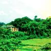The-Green-Bandipur-Tour